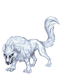 Silver_the_white_wolf