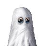 whchan83's avatar