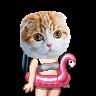 Nookicky's avatar