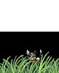 gooygreen