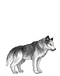 Ace Brigade's avatar