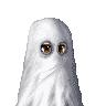 allupinnowhere's avatar