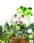 newpengyou