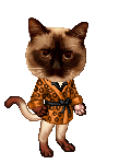 hi is this roman's avatar