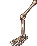 Spookier sexier leggier's avatar