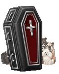 PTROA Member's avatar